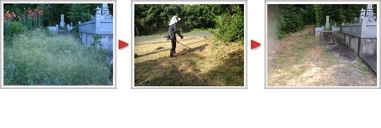 お墓の清掃 草刈り